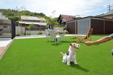 リフォームでお家もお庭も 素敵になる ペットと過ごす お庭のある クローズ外構