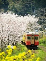 <稼ぎたい方歓迎☆>MAX1775円!電車の窓フレームの組立♪2
