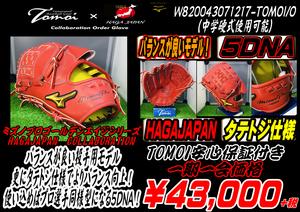 W820043071217-TOMOI/O