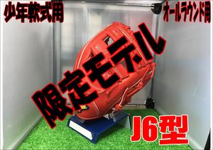 【限定グラブ】LT18-GS5/J6型