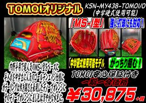 KSN-MY438-TOMOI/O