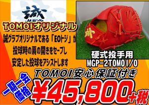 MGP-2TOMOI/O
