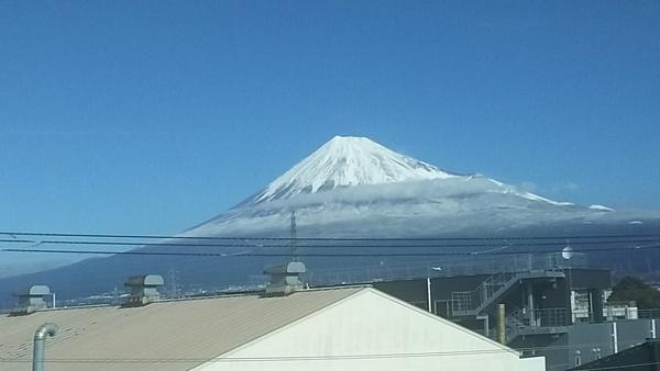 東京はすごく寒いと聞いていたけど???