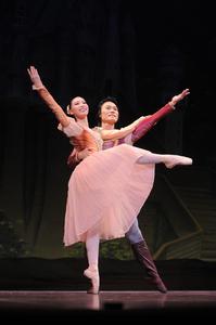 白鳥の湖【全幕】             役名:貴族パドトロワ(女性)(1幕) サイズ:M×2 ¥8,000- グラデ-ションのシルクの布地が綺麗です。