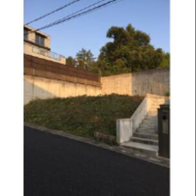 緑ヶ丘NT