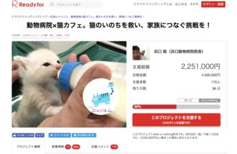 動物病院×猫カフェ