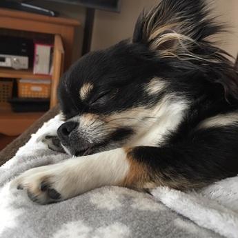 寝ているとき
