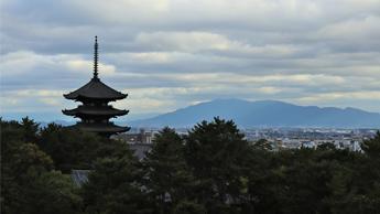 奈良の聖地を巡るエクスカージョン