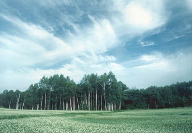 環境を変えることで自分の状態を良くする6つの方法